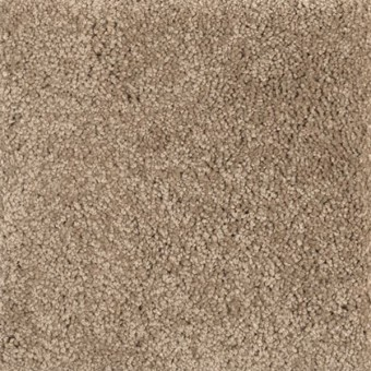 Pleasant Nature From Smartstrand Silk Mohawk Carpet