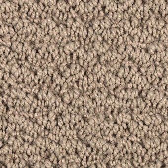 Forward Thought - Adobe From Mohawk Carpet