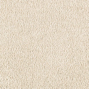 Stylish Story Iii Mohawk Carpet Save 30 50