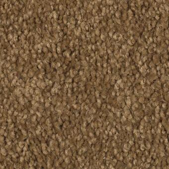 Coastal Path I - Maple Syrup From Mohawk Carpet