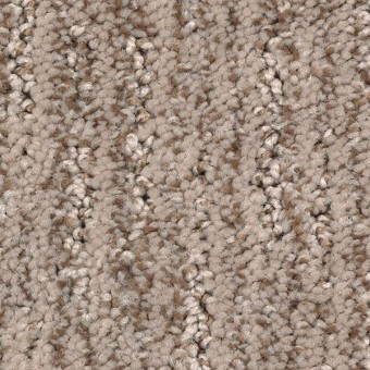 Sculptured Touch Mohawk Carpet Save 30 50