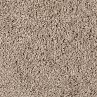 Natural Decoration - Apricot Butter From Mohawk Carpet