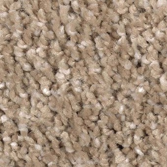 Pleasing Nature - Alabaster From Mohawk Carpet