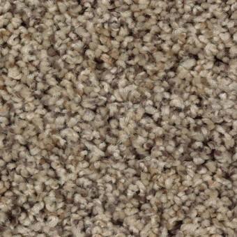 Perfect Direction Mohawk Carpet Save 30 50