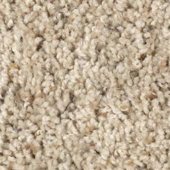 Coastal Cheer - Basketweave From Mohawk Carpet