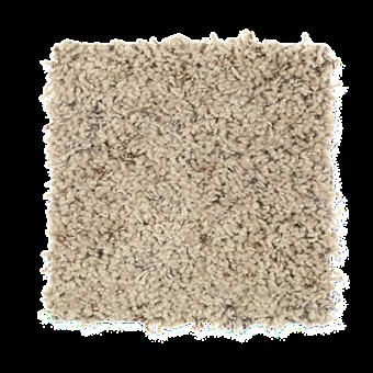 Perfect Combo (F) - Dry Branch From Mohawk Carpet