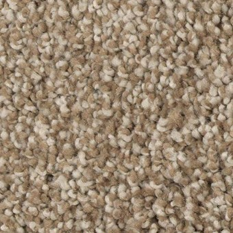 Perfectly Composed (T) - Brushed Suede Tonal From Mohawk Carpet
