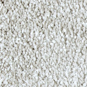 Exquisite Shades - Winter Ash From Mohawk Carpet