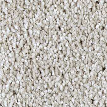Exquisite Shades - Windsor Castle From Mohawk Carpet