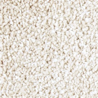 Exquisite Shades - Harmony From Mohawk Carpet