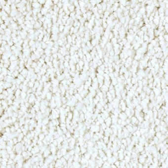 Exquisite Shades - Monarch Bone From Mohawk Carpet