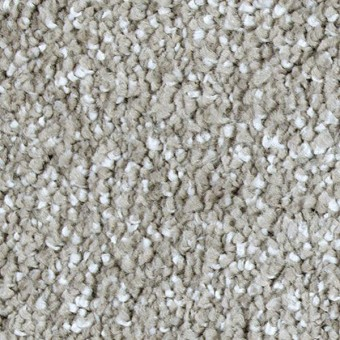 Exquisite Shades - Antiqued Silver From Mohawk Carpet