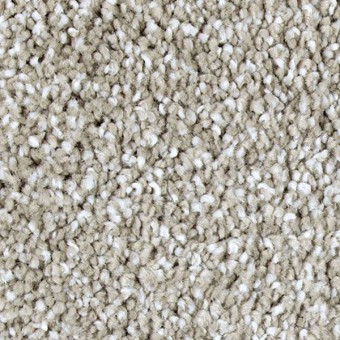 Exquisite Shades - Uptown Taupe From Mohawk Carpet