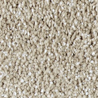 Exquisite Shades - Tradition From Mohawk Carpet