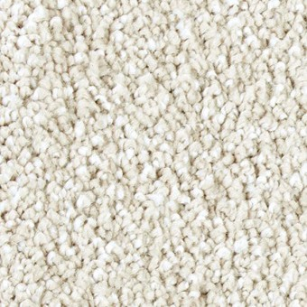 Exquisite Shades - Enchanting From Mohawk Carpet