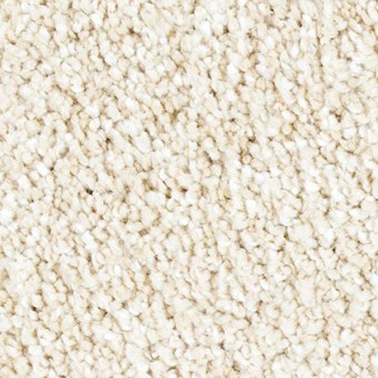 Exquisite Shades - Ivory Luster From Mohawk Carpet