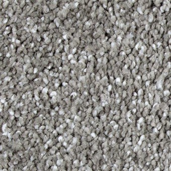 Exquisite Shades - Statuary From Mohawk Carpet