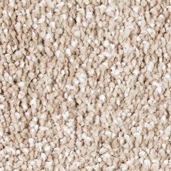 Exquisite Shades - Joyful Prelude From Mohawk Carpet