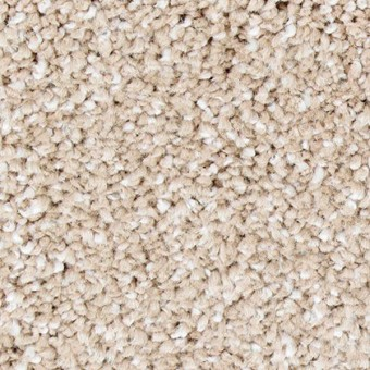 Exquisite Shades - Victorian Beige From Mohawk Carpet