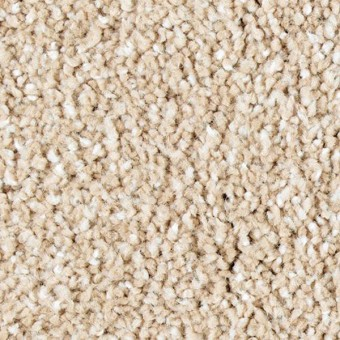 Exquisite Shades - Grande Oak From Mohawk Carpet