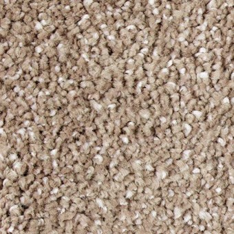 Exquisite Shades - Plantation From Mohawk Carpet