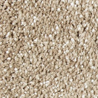 Exquisite Shades - English Toffee From Mohawk Carpet
