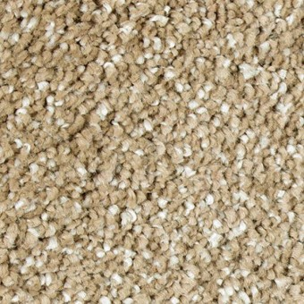 Exquisite Shades - Timeless From Mohawk Carpet