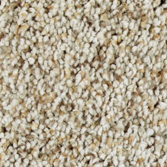 Exquisite Appeal - Dockside From Mohawk Carpet
