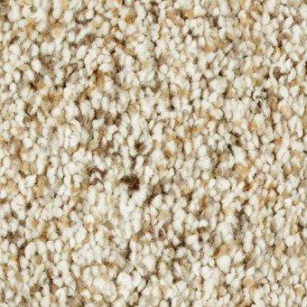 Exquisite Appeal - Tumbleweed From Mohawk Carpet