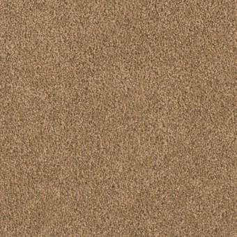 Matinee I - Honey Beige From Showcase Collection