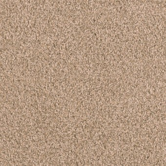 Matinee I - Almond From Showcase Collection