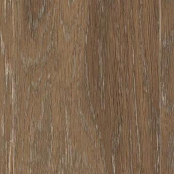 American Style - Ivory Coast Oak From Mohawk Hardwood