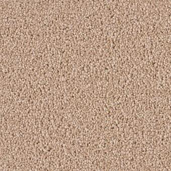 Star Struck - Sand From Dreamweaver