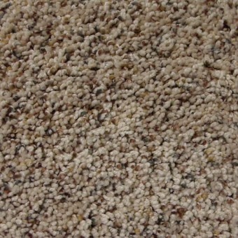Stratosphere From Dream Weaver Carpet Save 30 50