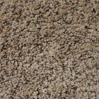 Stratosphere Dreamweaver Carpet Save 30 50 At Carpet