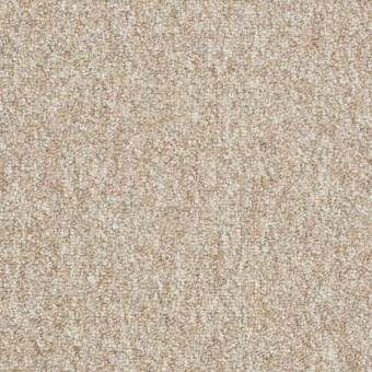 Camden Harbor Unitary - Belgian Linen From Shaw Carpet