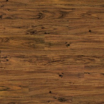 COREtec ONE - Alice Springs Acacia From Us Floors