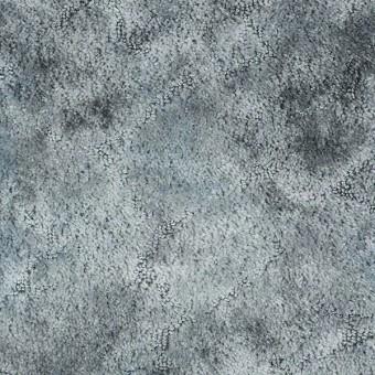 Tenacious - Platinum From Shaw Carpet