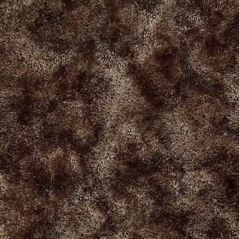 Mustang Sally - Coffee Bean From Shaw Carpet