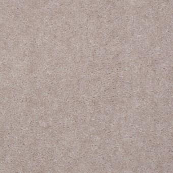 Hawkeye II - Fossil From Shaw Carpet