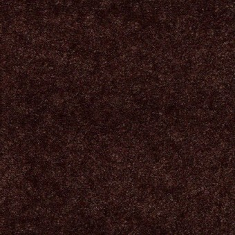 Hawkeye II - Buckeye Brown From Shaw Carpet