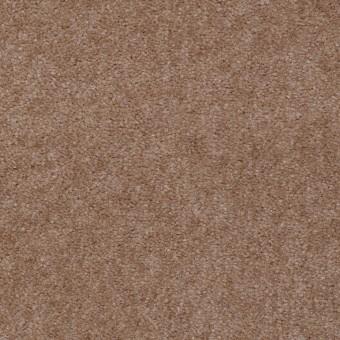 Hawkeye II - Twig From Shaw Carpet