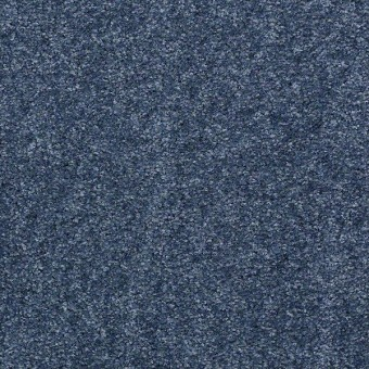 Instant Winner - Academy Blue From Shaw Carpet