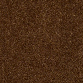 This is It - Brown Sugar From Shaw Carpet