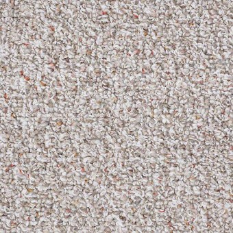 Pure Waters - Pebble Path From Shaw Carpet