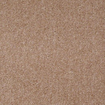 This Is It Plus - Adobe From Shaw Carpet