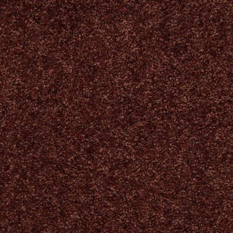 Full of Life - Aged Copper From Shaw Carpet