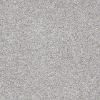 Everyday Comfort (s) - Antique Pewter From Shaw Carpet