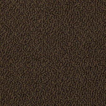 Traditional Elegance - Amazon From Shaw Carpet