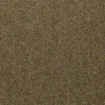 Outfitter - Autumn Moss From Shaw Carpet